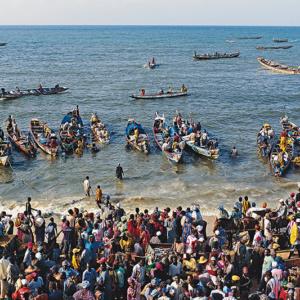 Fishermen arriving at M'Bour, Senegal