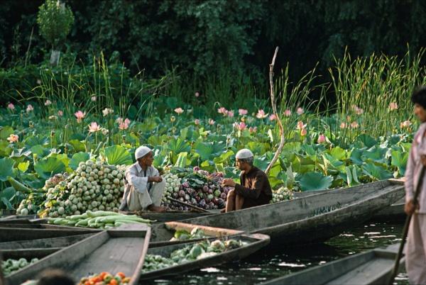 Le marche flottant sur le lac Dal, Srinagar, Cachemire     /     The floating market on lake Dal, Srinagar, Kashmir