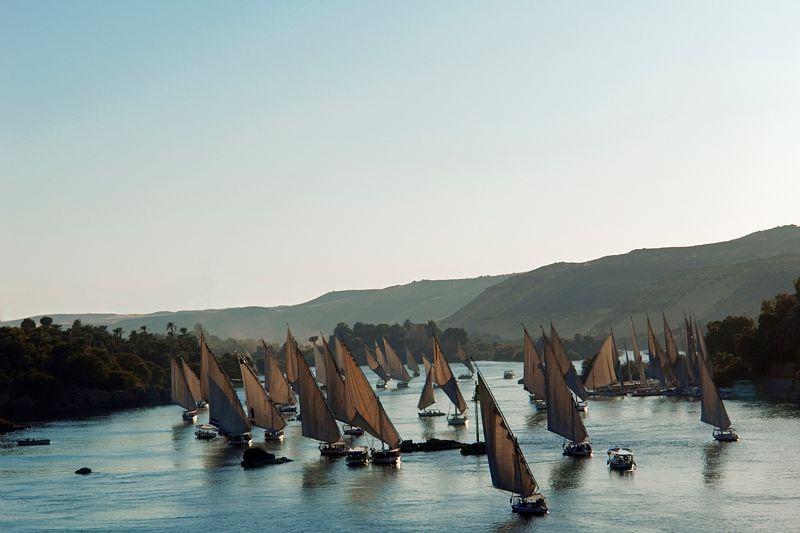 A Assouan, le Nil est toujours utilise pour transporter des marchandises meme si les felouques servent surtout au tourisme (Egypte). / Feluccas on the Nile in Aswan, Egypt.