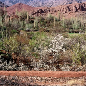 Spring in the village of Abyaneh, Iran.