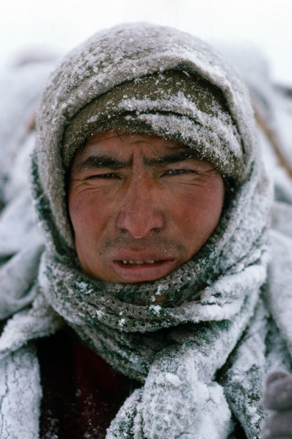 The face of a porter whipped by the wind, Zanskar, Indian Himalayas