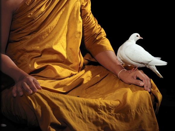 The venerable Maha Pinn Bhutawiriyo, a Buddhist monk, during a deep Vipassana meditation, Thailand